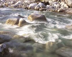 良質な水の宝庫・新川で生まれる醤油が味付けの要に